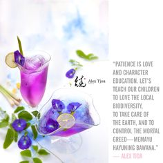 Enjoy the refreshing, delicious, and healthy butterfly pea tea with lemongrass and lime from Indonesia. Butterfly pea flowers (bunga telang) contain bioflavinoid that stimulates hair growth and antioxidant proanthocyanidin. Styling and photo by Alex Tjoa. Fruit Drinks, Detox Drinks, Healthy Drinks, Beverages, Healthy Eating, Butterfly Pea Flower Tea, Lemongrass Tea, Flower Food, Tea Benefits