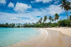 """PLAYA RINCÓN Dice el usuario de minube Ignacio que """"La imagen paradisiaca de postal existe"""", refiriéndose a esta playa de República Dominica..."""