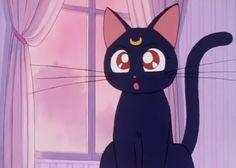 Luna, a talking cat who reveals to Serena her hidden identity and acts as a spirit guide. She is wise and knows all the things
