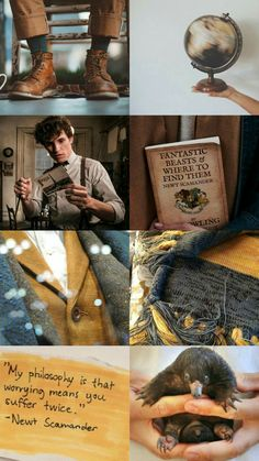 Harry Potter Tumblr, Harry Potter Pictures, Harry Potter Facts, Harry Potter Love, Harry Potter World, Newt Scamander Aesthetic, Harry Potter Background, Harry Potter Wallpaper, Harry Potter Aesthetic