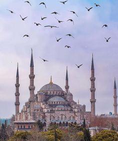 Blue Mosque Istanbul, Historical Art, Istanbul Turkey, Wallpaper Backgrounds, Wallpapers, Travel Around, Taj Mahal, Nice, World