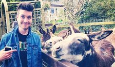 Dan Smith pointing at his band members after he used his quiff powers to transform them into donkeys.He'll soon realize that this is probably one of the more terrible decisions he's made since donkeys can't play instruments. Submit Dan points here