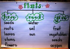 Plants: have, need, give.  Great idea for comparing and contrasting various species of plants or animals.