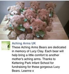 Bears in memory of Lucy Clay, with thanks to Kettering Park Infant School for fundraising for these gorgeous Lucy bears x