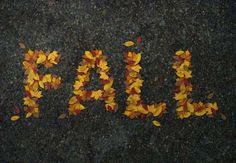 How to Create a Realistic Autumn Leaves Text Effect in Adobe Photoshop  Design Envato Tuts Design & Illustration