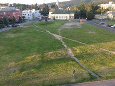 desire paths.