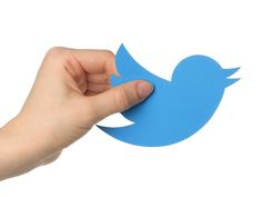 Bluechip Digital an recognized digital marketing agency and SEO company Dubai, provide data driven digital marketing services in Dubai, UAE and Middle East. Crime, Virtual Community, Twitter Backgrounds, Trump Taxes, Twitter Tips, Seo Company, Showcase Design, Social Media Tips, Digital Marketing