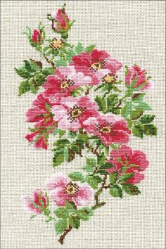 Riolis May Wild Roses - Cross Stitch Kit. This cross stitch kit includes 15 count flaxen Aida Zweigart fabric, Safil wool/acrylic threads color), needle, ins Cross Stitch Thread, Cross Stitch Rose, Counted Cross Stitch Kits, Cross Stitch Flowers, Cross Stitching, Embroidery Art, Cross Stitch Embroidery, Cross Stitch Patterns, Embroidered Roses