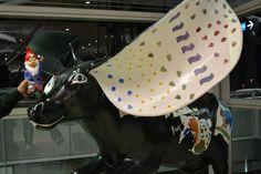 a cow in brisbane airport australia