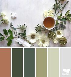 serving season | design seeds | Bloglovin'