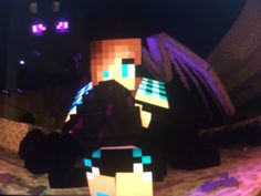 Me and the enderdragon