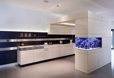 An aquarium is a pleasing method of displaying that you just love nature and that you have a must cope with it. A home aquarium is likely one of the Aquarium Design, Home Aquarium, Reef Aquarium, Wall Aquarium, Kitchen Cabinets Models, White Kitchen Cabinets, Kitchen Island, Modern Fish Tank, Conception Aquarium