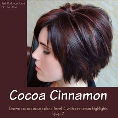 Brown cocoa base coor leve 4 with cinnamon highlights level 7...beautiful!