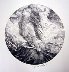 Sea siren. Ed Org. Copyright, Ed Org.