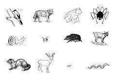Metsäretki sekä metsäneläintehtäviä ja -leikkejä – Suomi-koulussa Good Attitude, Moose Art, Preschool, Workshop, Language, Teaching, Education, Cards, Animals