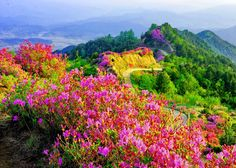 Manzara Doğa Resimleri - Sayfa 3 - Vazgecmem.NET