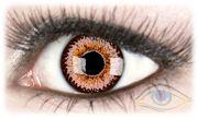 ColorNova Gray Contact Lenses