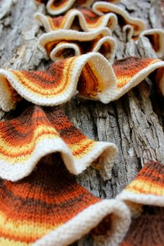 Bromeleighad: Knitting and Nature: 52 forms of fungi