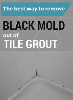 12 best mold and mildew images cleaning mold cleaning cleaning hacks rh pinterest com