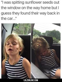 I Was Spitting Sunflower Seeds Out The Window...#funny #lol #lolzonline