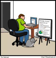 Cat vs. Internet - Imgur