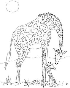 coloring page giraffe giraffe