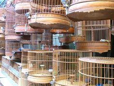 Bird cage. Photo taken at the bird and fish market in Shanghai, China.