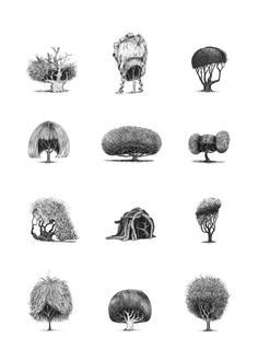 13-Trees-With-Haircuts.jpg (600×840)