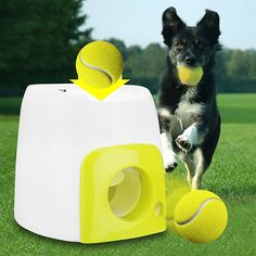 Pet Dog Launcher Tennis Ball Toys Fetch Thrower Throw Up Hyper Game Outdoor Toys at Banggood Pet Dogs, Dog Cat, Pets, Automatic Ball Launcher, Tennis Ball Launcher, Pet Ball, Thing 1, Interactive Toys
