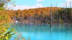 Autumn Music〜Beautiful Autumn〜 Beautiful Music