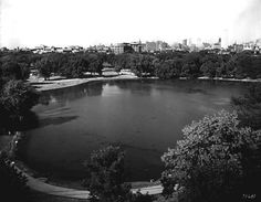 Loring Park and downtown Minneapolis, 1929.