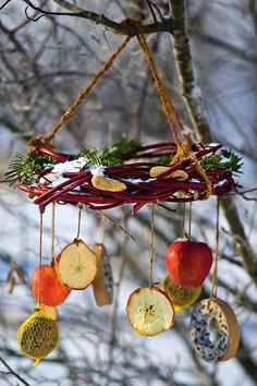 Remember to feed the birds this Winter. Remember to feed the birds this Winter. Bird Feeder Craft, Garden Bird Feeders, Bird Feeders For Kids To Make, Bird Seed Ornaments, Winter Diy, Homemade Bird Feeders, Backyard Birds, Garden Crafts, Garden Art
