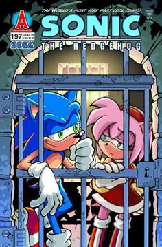 Instead of Sally Acorn, Amy Rose is in jail with Sonic. Wished this happened.