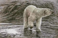Robert Bateman gallery at Art Country Canada with paintings, canvas, giclee, limited edition prints and Wildlife Paintings, Wildlife Art, Animal Paintings, Black Bear Cub, Mountain Art, Bear Art, Animal Sketches, Canadian Artists, Limited Edition Prints