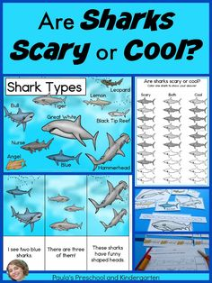 Are Sharks Scary or Cool? Download this FREE graph and find out what your students think Ocean Lesson Plans, Preschool Lesson Plans, Kindergarten Lessons, We Are Teachers, First Grade Teachers, Shark Activities, Preschool Activities, Teaching Main Idea, Teaching Ideas