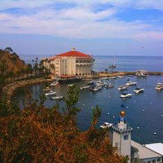 Catalina. Lisa was pregnant with Teresa and we walked from the Wrigley Tower back to the boat. What a trek that was