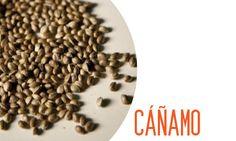 semillas de cáñamo, Súper granos del futuro (Click en la imagen)