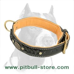 Collar Leather Collar, Fanny Pack, Belt, Accessories, Fashion, Hip Bag, Belts, Moda, Leather Necklace