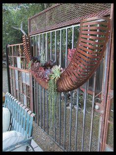 Farm machine wheel guard planter, Rancho Reubidoux