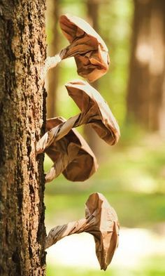 Sweet Paul's Brown Paper Bag Mushrooms good idea for witches stew ingredient Land Art, Butterfly Garden Party, Mushroom Crafts, Paper Art, Paper Crafts, Off The Map, Sweet Paul, Festa Party, Nature Table