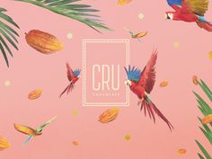 "Check out this @Behance project: ""CRU CHOCOLATE 