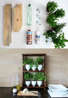 Pequeño jardín de hierbas reciclando botellas de plástico - Muy Ingenioso