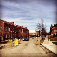 Spring is finally here at Alfred University! #alfredu