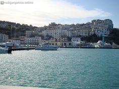 Marina di Rodi Garganico, Cidonio: «25 milioni o risolviamo contratto» - http://blog.rodigarganico.info/2015/attualita/marina-di-rodi-garganico-cidonio-25-milioni-o-risolviamo-contratto/