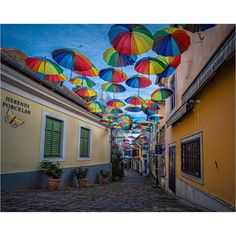 A colourful street in the Hungarian town of Szentendre Hungary, Street, Fun, Travel, Color, Viajes, Colour, Destinations, Traveling