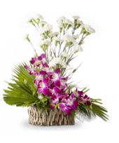 A Basket of 10 white orchids and 5 purple orchids is one of the best flower combination for your friends and colleagues, boss or for any official purpose. Online Flower Shop, Send Flowers Online, Order Flowers, Simple Flowers, Exotic Flowers, Fresh Flowers, Teddy Bear Birthday, Fresh Flower Delivery, Singing Happy Birthday