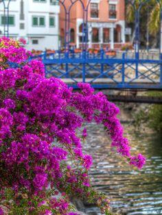 Puerto de Mogan - Photography by Valerie Mellema