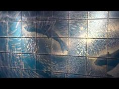 00003 Lenticular mural at St.Louis Zoo Sea Lion Sound, by Rufus Butler Seder, 071013 - YouTube