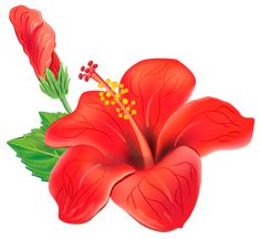 Red Exotic Flower PNG Clipart Picture