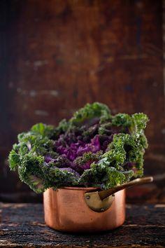 Savoy Lettuce from Helene Dujardin
